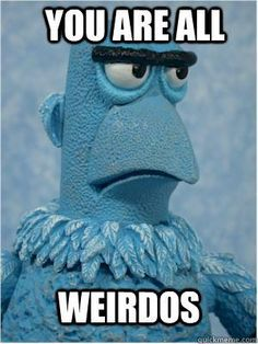 Shit Lookalikes Classic: Mick McCarthy and Sam the Eagle from Sesame Street Funny Memes, Hilarious, Jokes, The Muppet Show, Comic, Jim Henson, Disney Memes, Thats The Way, Funny Photos