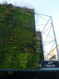 green wall Les Halles Avignon - Patrick Blanc