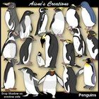 Penguins Clipart Pack