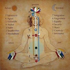 Chakra meditation lotus pose yoga sutras