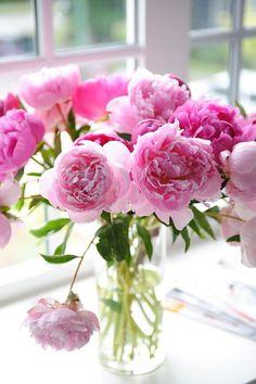 Pretty pink peonies flower arrangement in a glass vase. Bouquet of pink peonies. My Flower, Fresh Flowers, Pink Flowers, Beautiful Flowers, Happy Flowers, Unique Flowers, Cactus Flower, Exotic Flowers, Summer Flowers