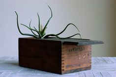 #vintage #homedecor #wood #box #container