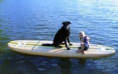 Bamboo Soft Top RAVE Sports Paddle Board Perfect for you, your dog and kid! Sup Paddle, Dogs And Kids, Water Crafts, Paddle Boarding, Bamboo, Stability, Paddles, Core, Cushion