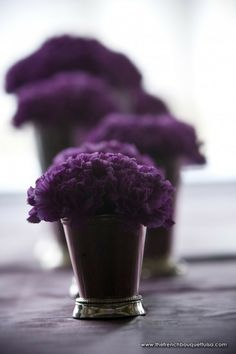 Dark purple carnations in a purple vase.