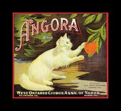 Angora Oranges - Free Vintage Fruit Crate Labels Wallpaper Image