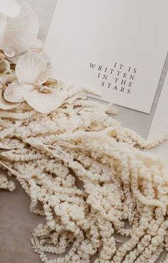 Style your wedding with bleached floral and earthen hues. A contemporary style guide for the modern bride. Wedding Trends, Boho Wedding, Elegant Wedding, Wedding Styles, Taupe Wedding, Minimal Wedding, Wedding Ideas, Wedding Paper, Wedding Bouquets