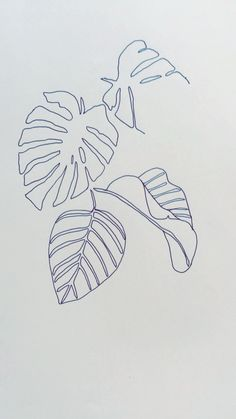 Leaves - japanese ink scetch