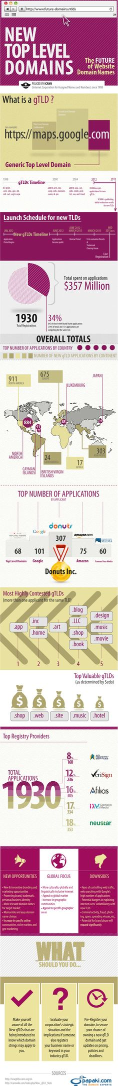 """What particular extensions can you expect to see making an appearance  in domain names in the near future?  Check out the following """"New Top  Level Domains: The Future of Website Domain Names"""" infographic for the inside scoop."""
