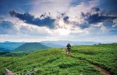 shining rock wilderness nc - Bing Images