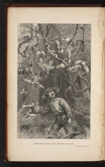Bates, Henry W., 1863, The naturalist on the River Amazons, v.1. Frontispiece. :: The Grandeur of Life