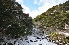 '겨울'하면 아름다운 한라산의 겨울도 빼놓을 수 없습니다. 중산간에 있는 계곡 사이로 보이는 눈내린 모습은 그 어디에서도 볼 수 없는 아름다운 자태를 뽐내고 있네요. 한라산으로 오세요!