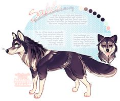 commission:+sable+by+BabyWolverines.deviantart.com+on+@DeviantArt
