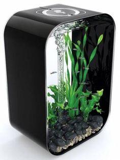 biOrb Life 45 Black Aquarium fish tanks for sale.