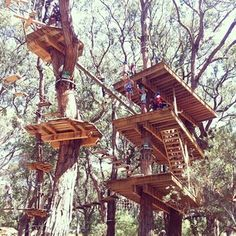 Tree surfing, Mornington Peninsula | 40 Uniquely Australian Experiences To Add To Your Bucket List.