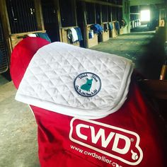FLASH SALEHow do you Enjoy The Little Things In Life!? We #ETLTIL by having a Baby Pad FLASH SALE! Click the link in our bio to get yours before the sale ends! Original Price: $32 FLASH SALE price: $25   #welshwear #corgination #sale #equestrian #corgimom #flashsale #preppy #equestrianstyle #ETLTIL #CWD #chestercounty