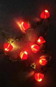 Lights & Lighting Amiable Double Color Led String Lights Christmas Wedding Party Decor Supplies Christmas Party Valentines Holiday Curtain Decorations Refreshment