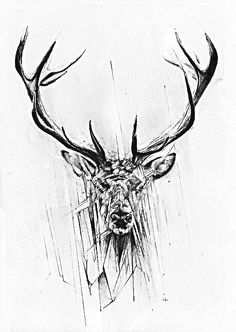 Red Deer Art Print by Alexis Marcou Hirsch Tattoos, Fenrir Tattoo, Drawn Art, Bild Tattoos, Deer Art, Red Deer, Future Tattoos, Tattoo Inspiration, Creative Inspiration