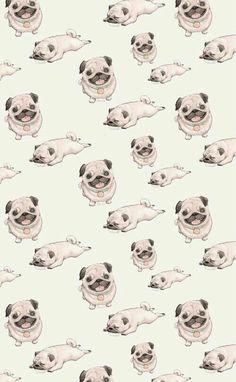 Картинка с тегом «pug, dog, and wallpaper»