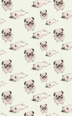 Картинка с тегом «pug, dog, and wallpaper»