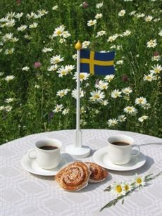 Swedish fika (coffee), summer!