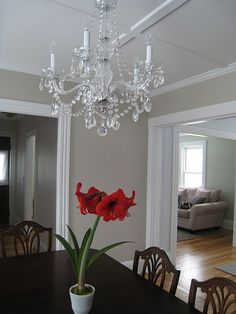 1000 Images About Paint Colors On Pinterest Benjamin Moore Palladian Blue And Benjamin Moore