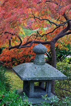 Japanese Gardens Japanese Garden Design And Garden Design On Pinterest