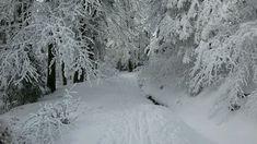 Nejkrásnější místa pro zimní sportovní aktivity   Places to go... The most beautiful winter hiking tours...  #superlifecz #winter #sports #zen #snow #apps #czechrepublic    Orlické hory