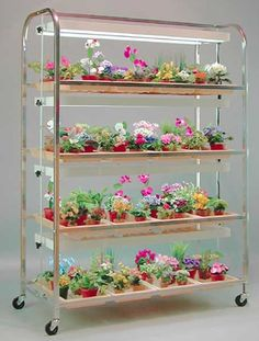 Growers Supply 4 Shelf 16 Tray Full Sized Lighted
