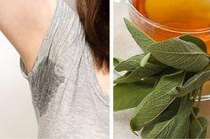 Elimina el sudor y el olor de tus axilas de manera muy sencilla y lo mejor, para siempre. El sudor es un fluido ácido incoloro que se segrega a través de las glándulas sudoríparas ubicadas dentro de la piel. Este contiene ácidos grasos y una buena cantidad de minerales que actúan como agentes antibacterianos contra …