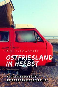 Ostfriesland-Reise im Herbst - 4 Tage mit dem Bulli unterwegs. . Strand, Alpakas, Ostfriesentee und Fischbrötchen.