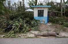 After Hurricane Matthew, Devastation in Southern Haiti - The New York Times