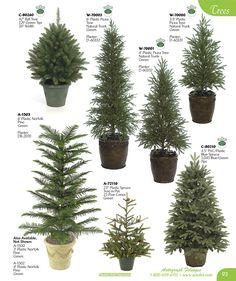 evergreen tree chart
