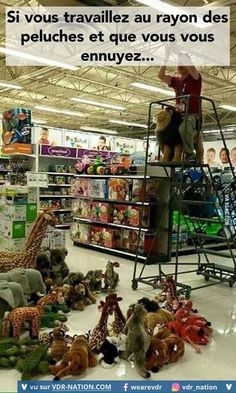 This is why I love working in a toy store! More memes, funny videos and pics on Really Funny Memes, Stupid Funny Memes, Funny Relatable Memes, Haha Funny, Funny Cute, Funny Stuff, Funny Things, Funny Work, 9gag Funny