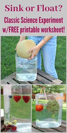 Will it sink or float? Classic science experiment for kids - fun ways to introduce preschool, kindergarten and elementary kids to physic concepts! Includes a free printable worksheet so students can predict if an item will sink or float BEFORE the drop it Science Experiments For Preschoolers, Preschool Science Activities, Cool Science Experiments, Science Lessons, Science For Kids, Earth Science, Science Projects, Preschool Kindergarten, Science Notes