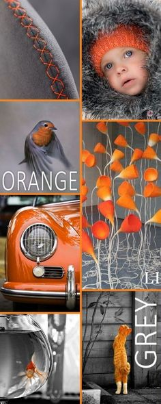 Orange and Grey Color Inspiration I Grey Palette Inspiration Colour Schemes, Color Trends, Color Combos, Color Patterns, Color Harmony, Color Balance, Mood Colors, Colours, Color Collage