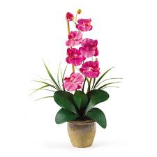 Phalaenopsis Silk Orchid Flower in Dark Pink with Vase | Coastal Chic decor inspiration | Nearly Natural silk/faux floral arrangements