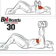 Chest Exercises Ejercicios para Pecho