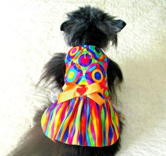 RainbowHued Dog Harness Dress for Small by BloomingtailsDogDuds, $23.95