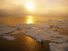 Alerta: El cambio climático puede llevar a 100 millones a la pobreza extrema