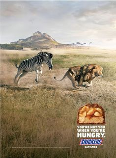 Wild zebra: you're not you when you're hungry - Advertising Agency: BBDO, New York, USA Clever Advertising, Advertising Poster, Advertising Campaign, Advertising Design, Ads Creative, Creative Posters, Poster Design, Ad Design, Tachisme
