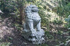 National Botanic Gardens - Dublin - [ http://photography.osx128.com/national-botanic-gardens-dublin-10/ ] #ParksAndGardens