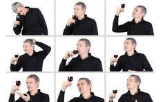 Esperto vino naturale