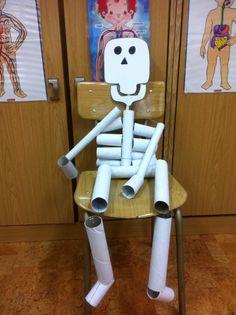 Esqueleto hecho con rollos de papel higiénico y de cocina.