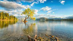 new zealand south island lake wanaka hd wallpaper download