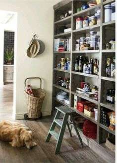 I personally would love an open pantry like this, sort of like a walk way. Of course, I'd use nice glass containers for everything but for me this is so much easier than a walk in pantry where corners become complicated and crammed.