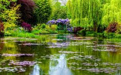 Famous gardens of impressionist painter Claude Monet in Giverny, house, water garden and flower garden. Claude Monet Giverny, Monet Garden Giverny, Bing Wallpaper, Wallpaper Gallery, 1080p Wallpaper, Best Vacation Destinations, Best Vacations, Pond Design, Garden Design