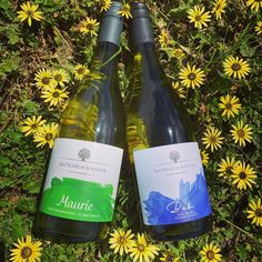 Matriarch and Rogue produce a range of alternative varieties in this the Clare Valley including Fiano and Vermentino Premier Wine, Clare Valley, Wine Varietals, Wine Making, South Australia, Wines, Alternative, Range, Website