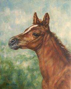 Red Filly Horse Oil Painting Western Ranch Arabian Art, painting by artist Debra Sisson