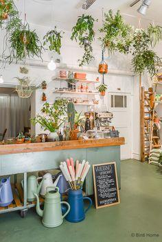 Wildernis- En växt butiken i Amsterdam som fungerar som både en cafe och konst och växt butik