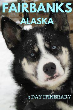 Adoration 4 Adventure's 3 day backpacking trip to Fairbanks, Alaska, U.S.A.